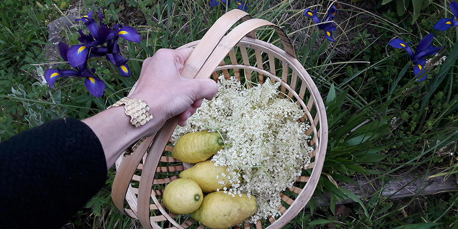 Elderflower syrup recipe from Borgo4case