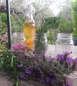 Permacultura-aceto di mele-autoproduzioni