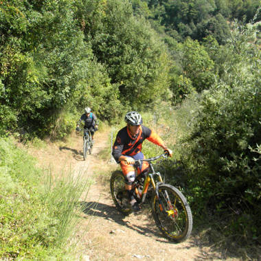 Versilia per ciclisti: gli itinerari più belli da Borgo4case