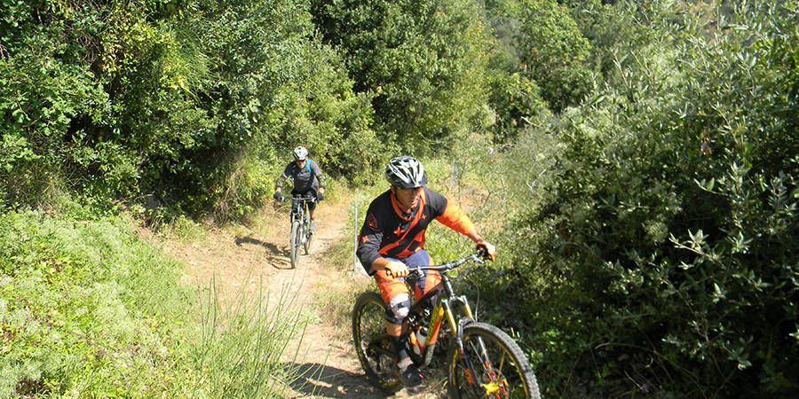 Versilia by bike: 3 itineraries