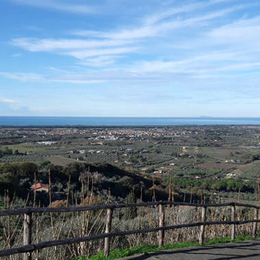Day trip from Borgo4case: food and wine tours on the hills of Bolgheri