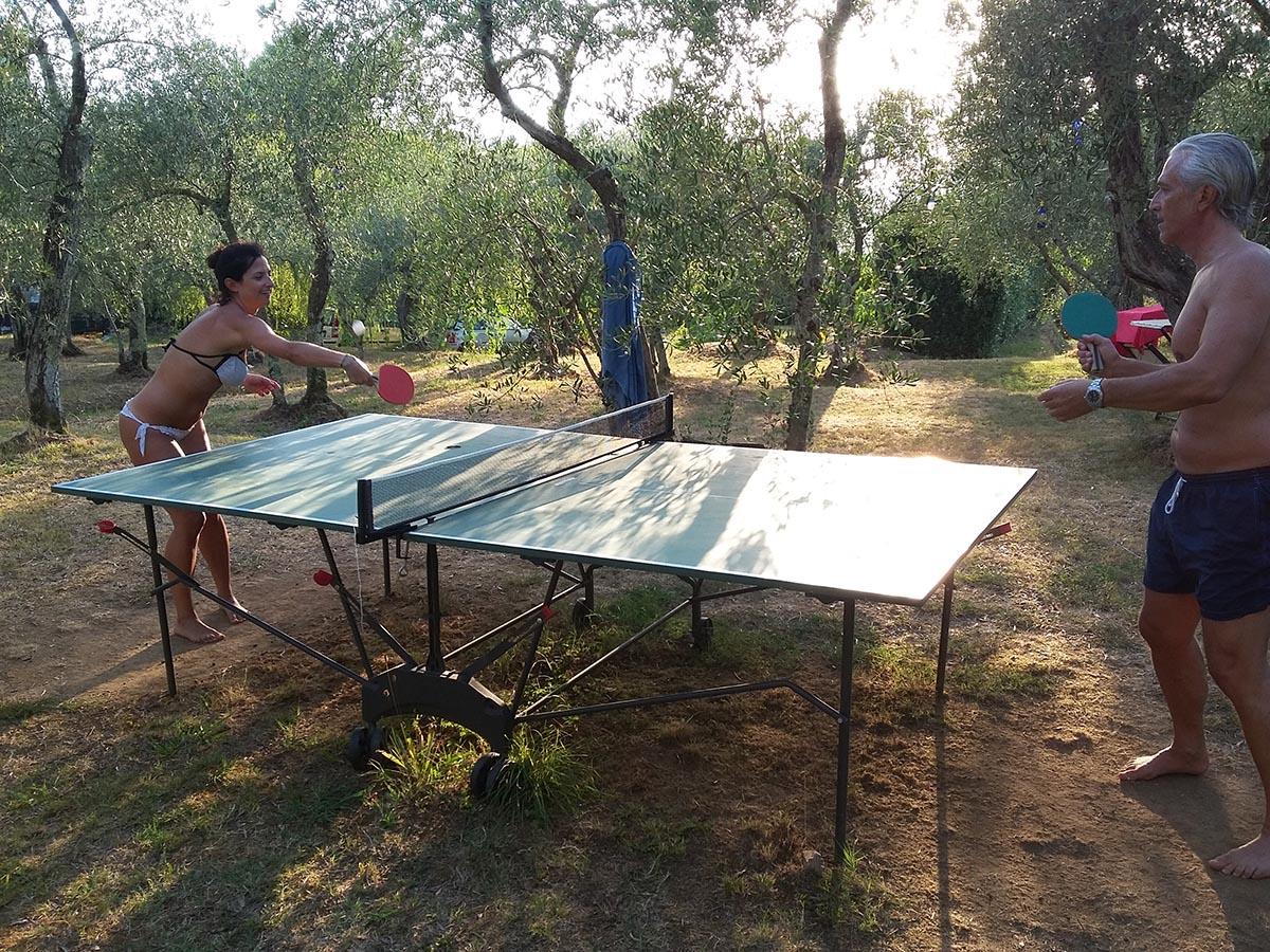 ping pong uliveto