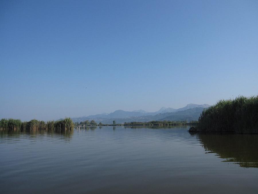 Puccini-lake-massaciuccoli-landscape